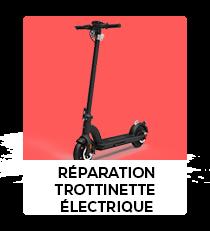 REPARATION TROTIENNE ELECTRIQUE